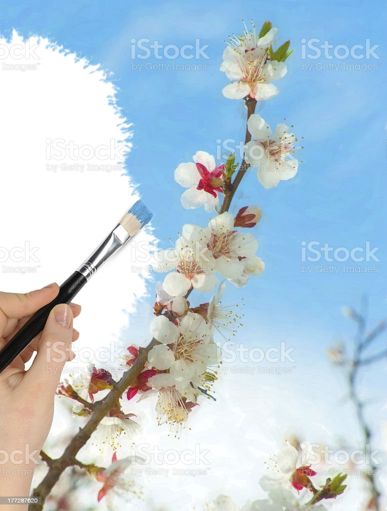The hand with a brush draws landscape royalty-free stock photo