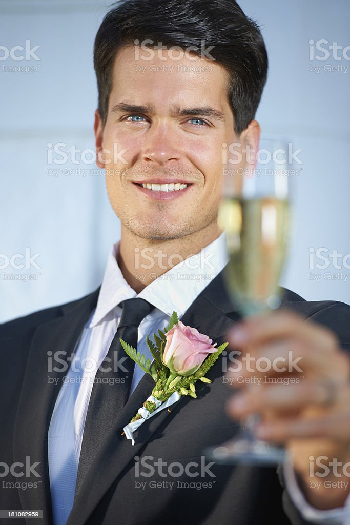 The happy groom royalty-free stock photo