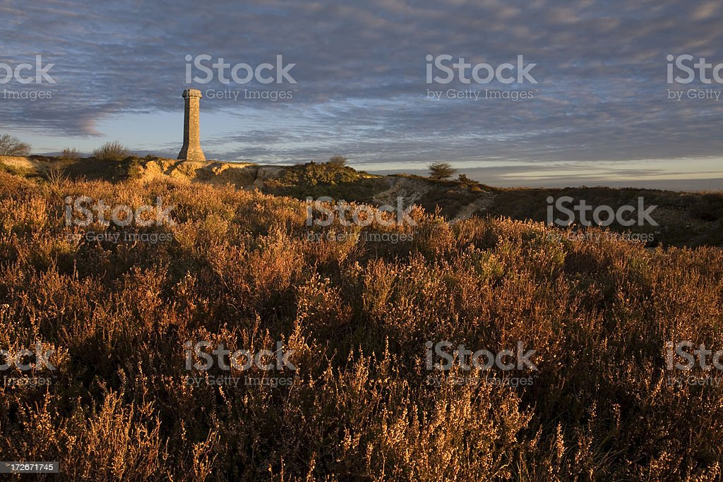 The Hardy Monument stock photo