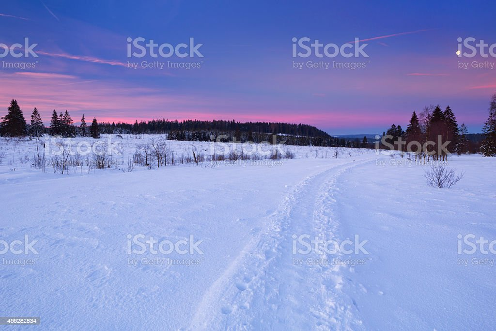 The Hautes Fagnes in Belgium in winter at sunrise stock photo