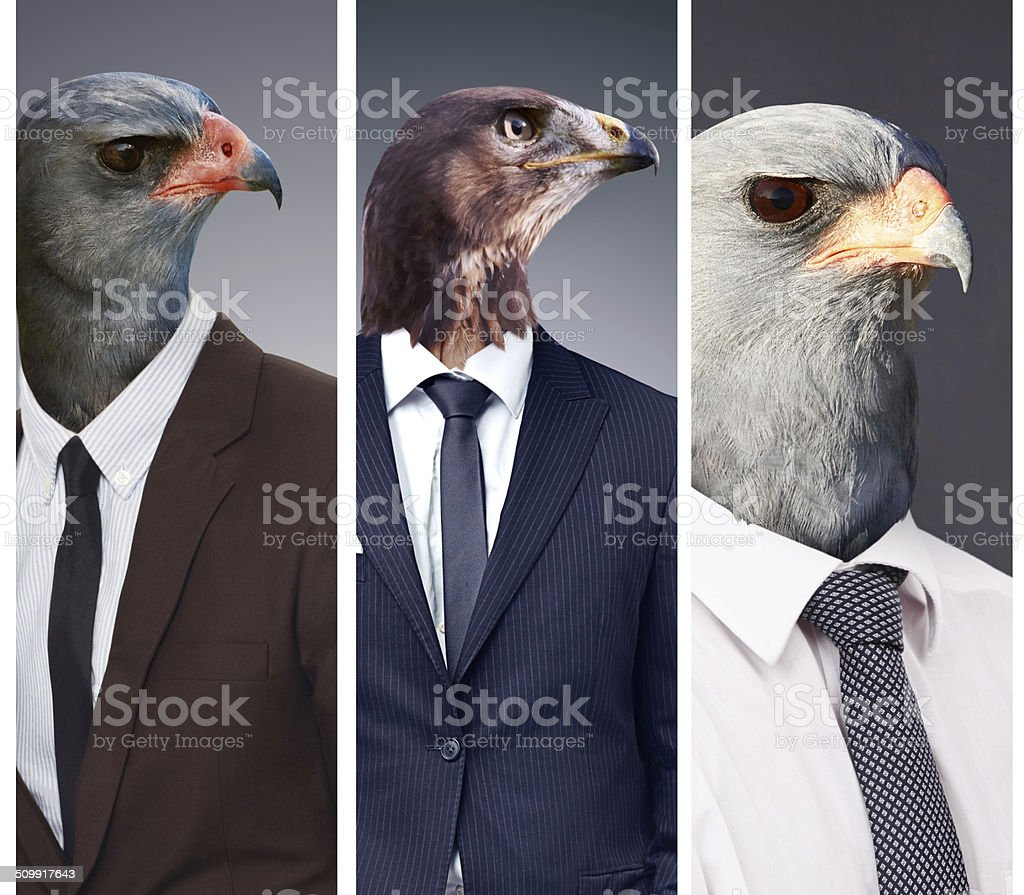 The high flyers stock photo