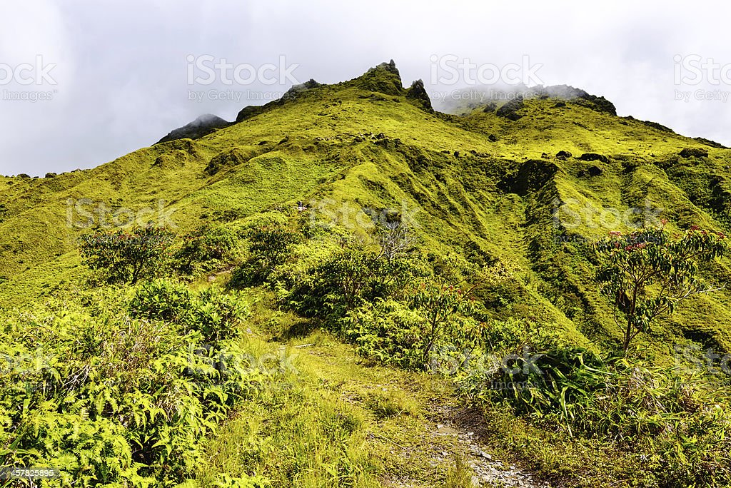 The hike up Mount Pelee, Martinique royalty-free stock photo