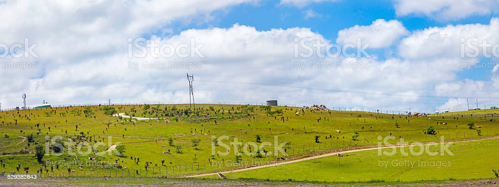The Hill where Nelson Mandela been laid to rest stock photo