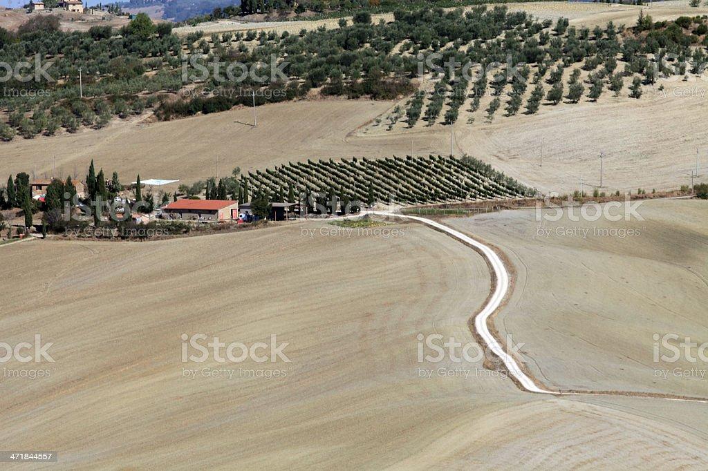 The hills around Pienza and Monticchiello royalty-free stock photo
