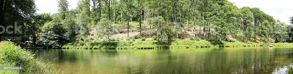 The Hilschweiher, an idyllic lake in the Palatinate forest stock photo
