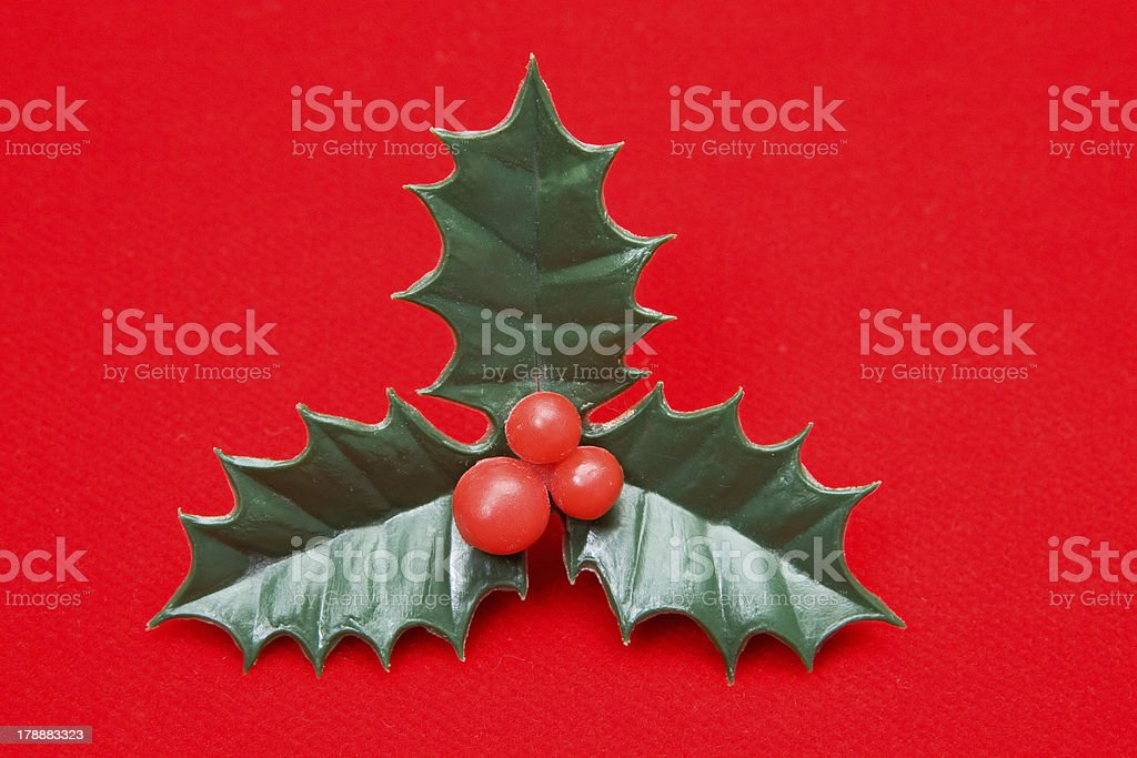 The holly typical ornament of christmas royalty-free stock photo