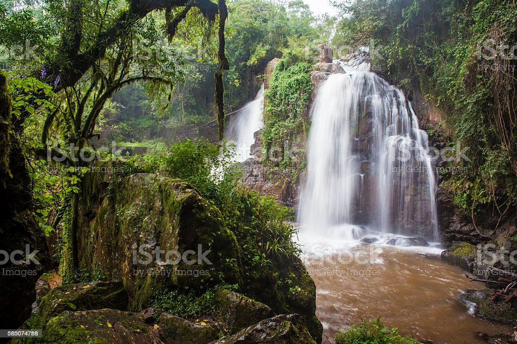 The Horse Shoe waterfall amid lush tropical forest vegetation stock photo