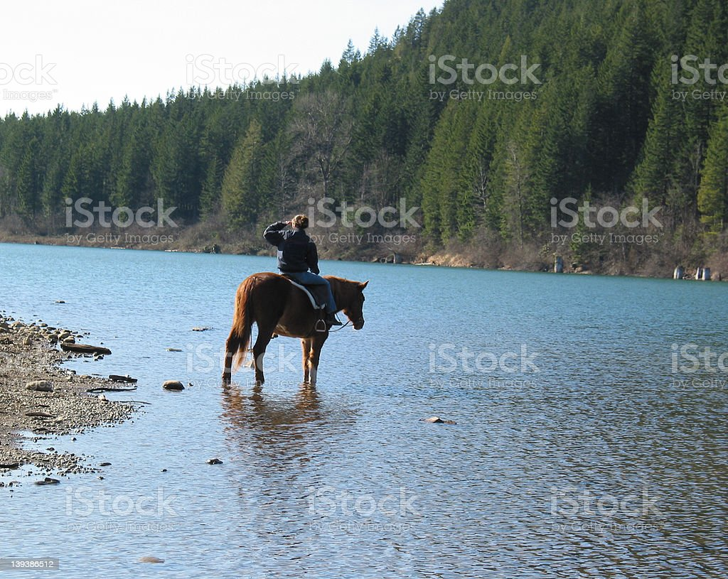 The Horsewoman stock photo