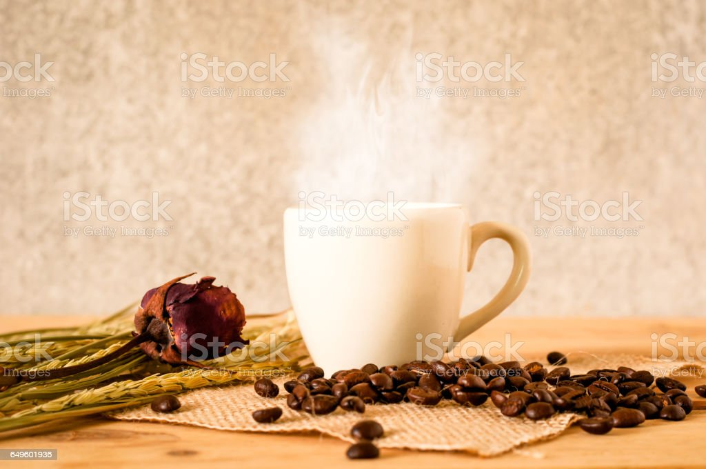 the hot coffee in the white cup on wooden table with coffee seed stock photo