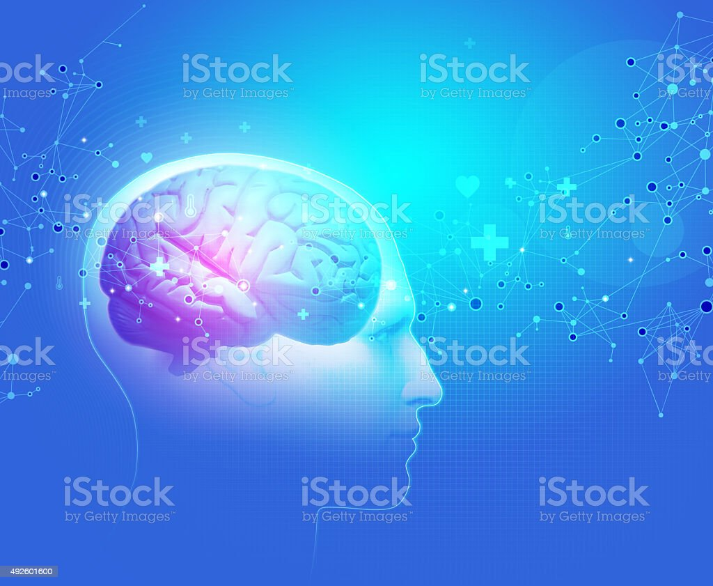 The Human Body - Brain stock photo