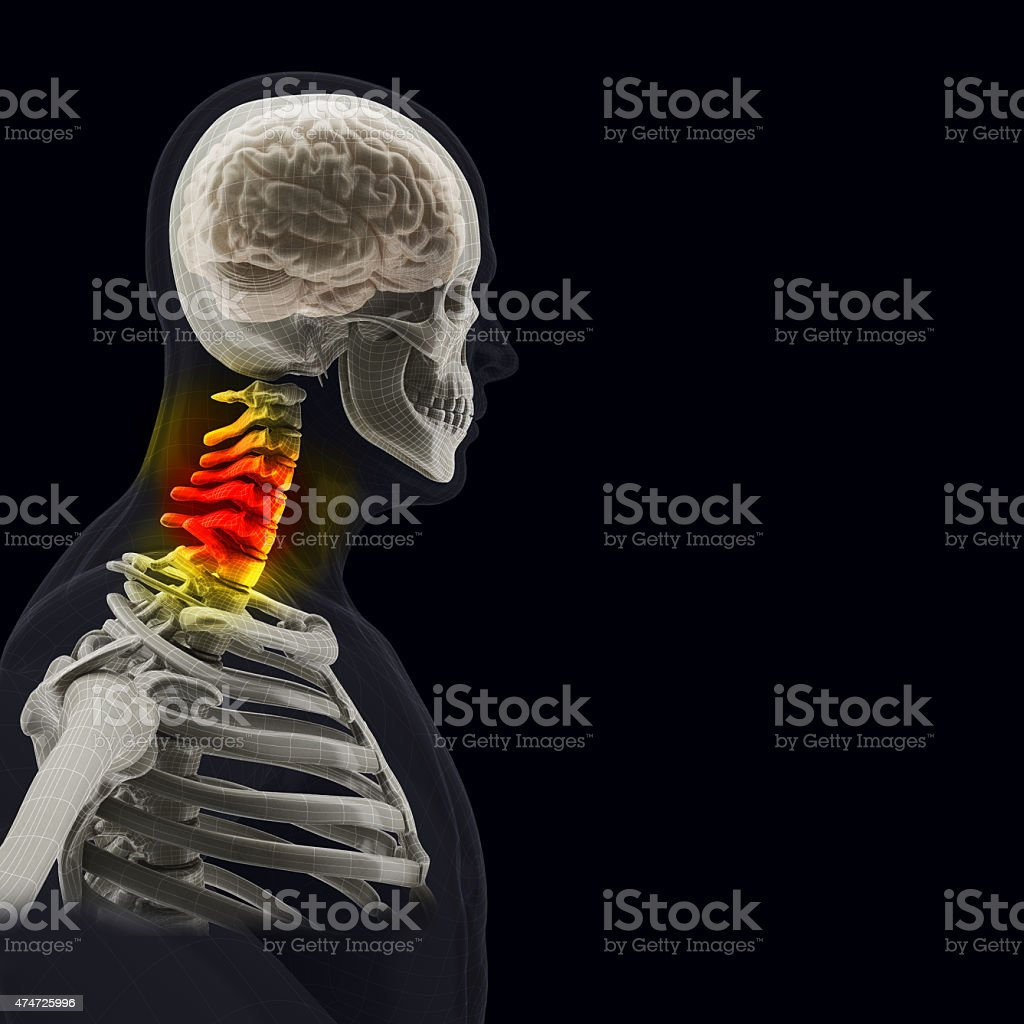 The human body (organs) by X-rays on black background stock photo