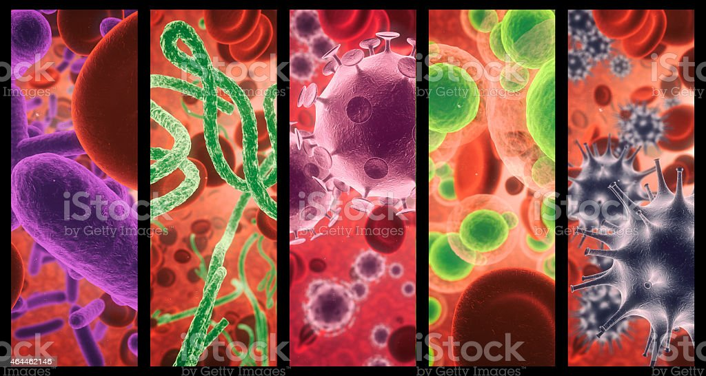 The human body vs the virus stock photo
