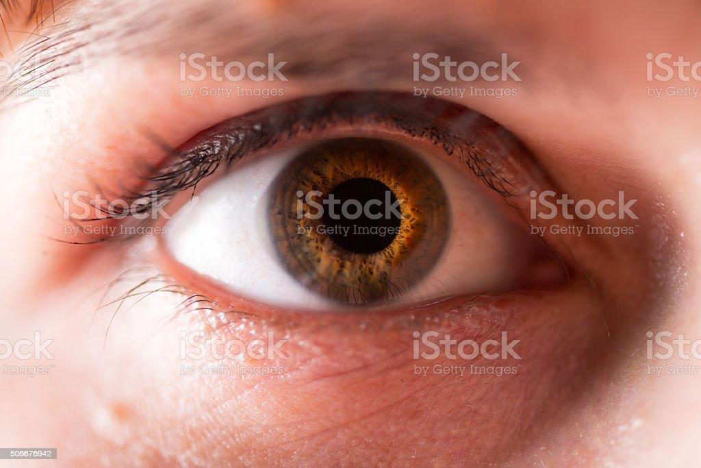 The human eye stock photo