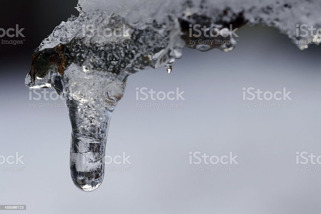 the icicle stock photo