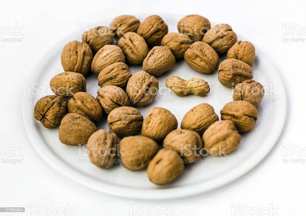 The Intruder. Peanut and Walnuts stock photo
