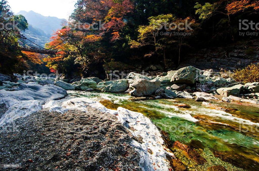 The Iya valley and Kazurabashi bridge, Tokushima, Shikoku, Japan stock photo