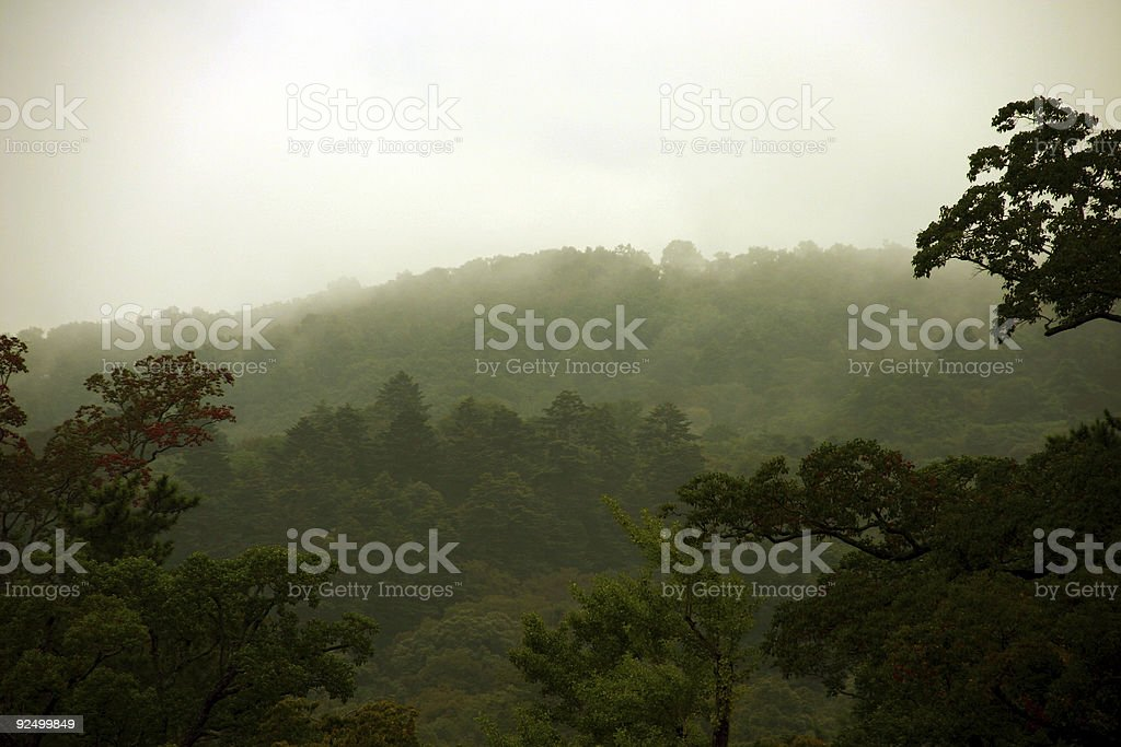 the Japanese mist stock photo