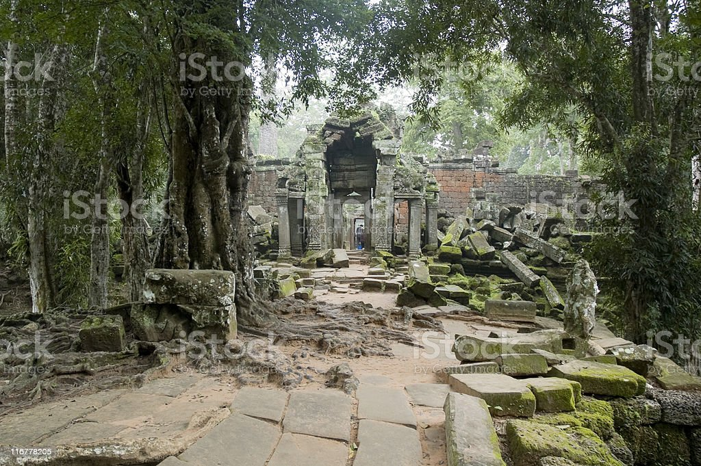 The Jungle Slowly Reclaiming Angkorian Temples In Cambodia royalty-free stock photo