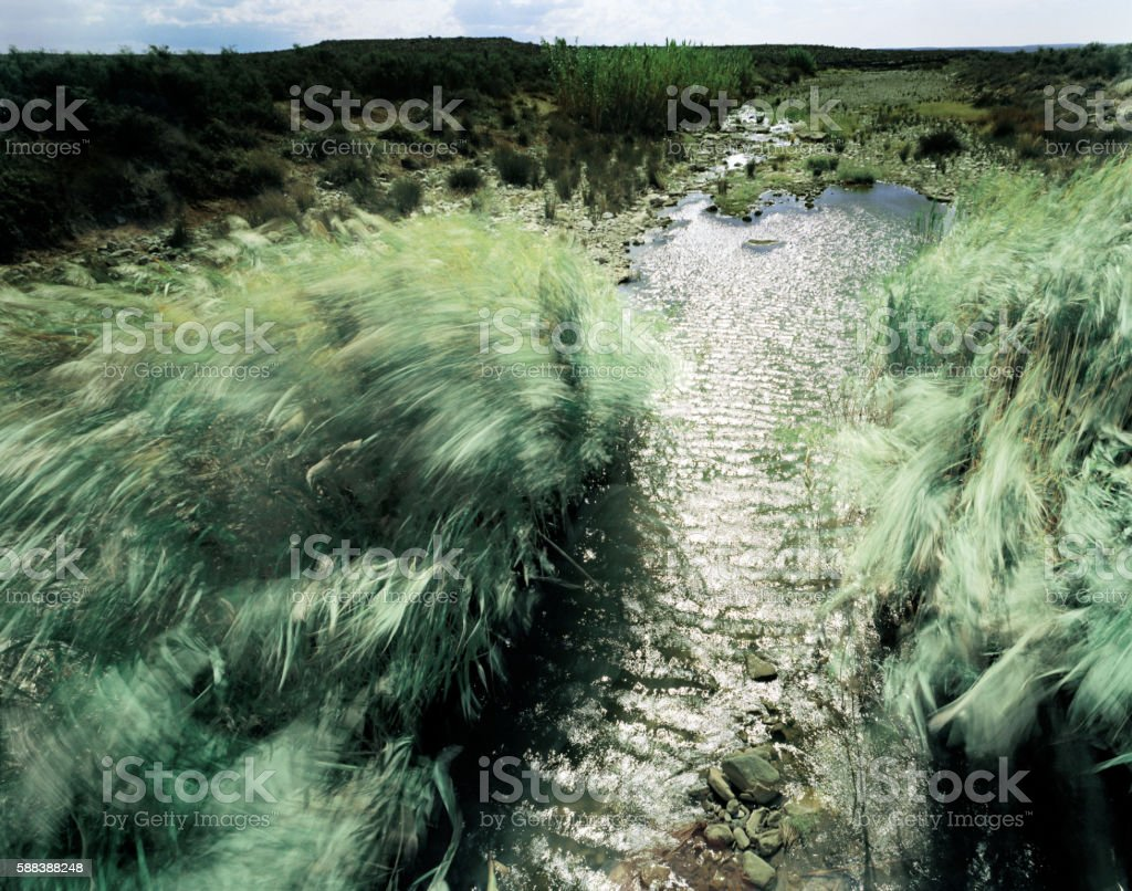 The Karee River, Sutherland. Karoo, South Africa stock photo