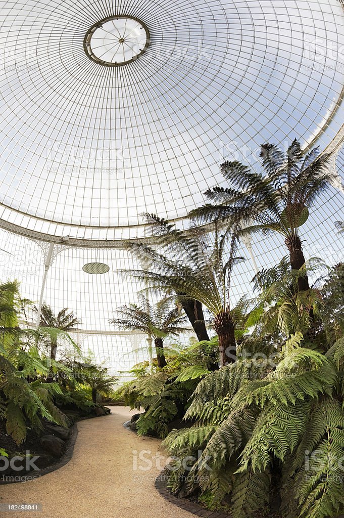The Kibble Palace stock photo