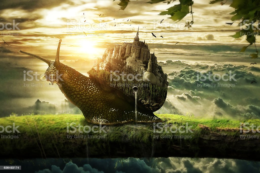 The kingdom of snail stock photo
