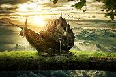 The kingdom of snail