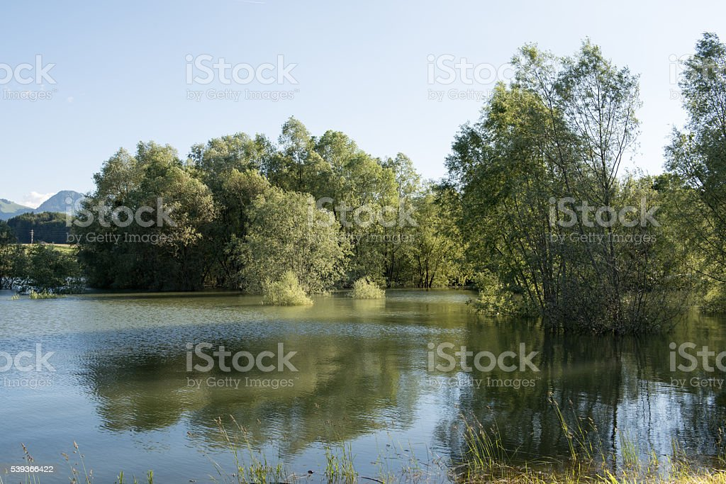 The Lake Gruyère stock photo