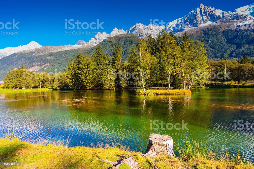 The lake reflected evergreen spruce stock photo
