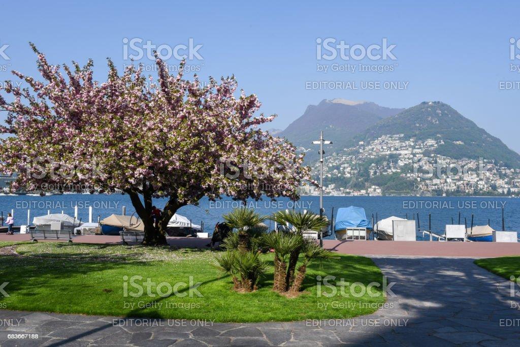 The lakefront of Lugano on the italian part of Switzerland stock photo