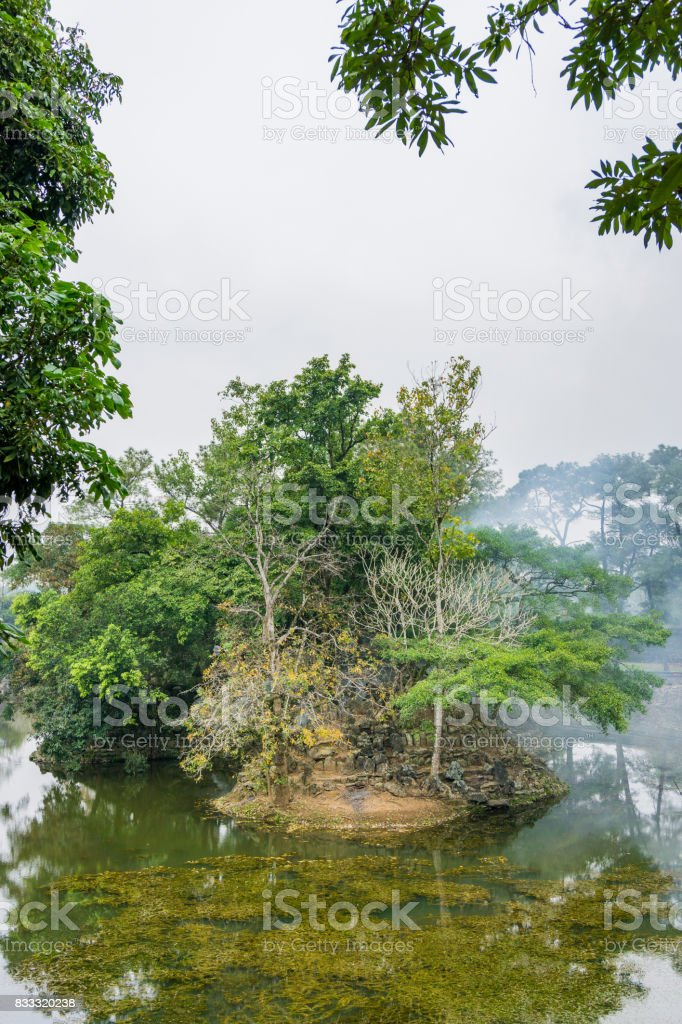 The landscape of the old tree in lake stock photo