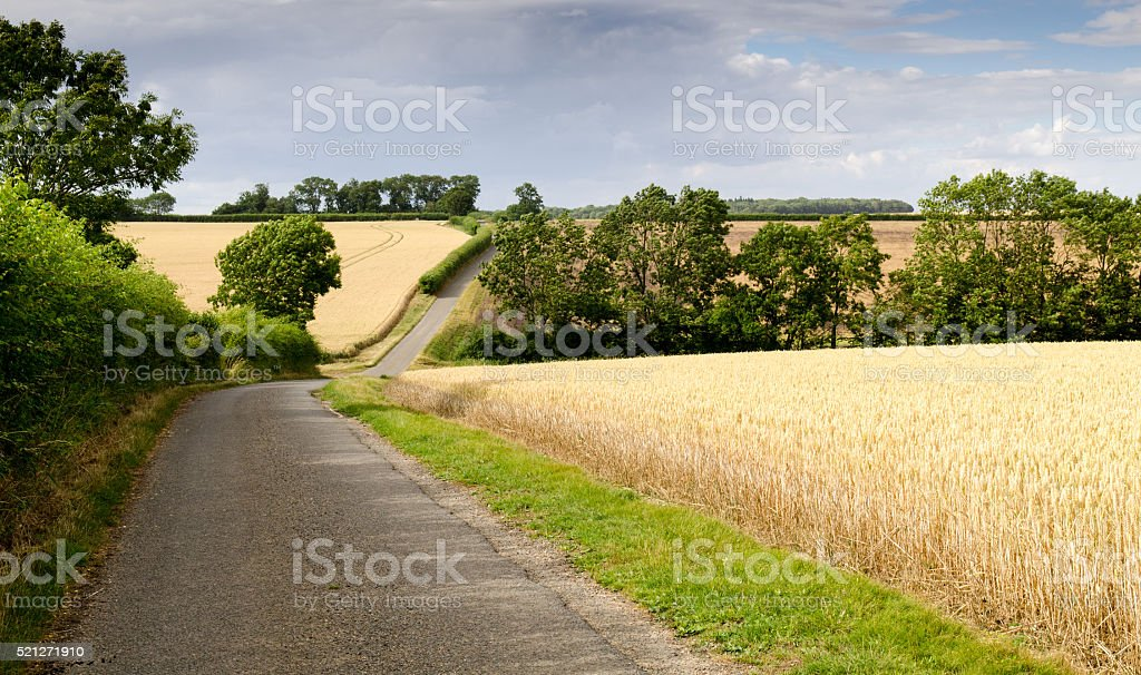 The lane to Hinxton stock photo