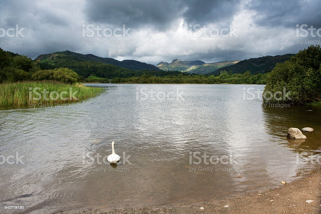 The Langdales as Seen Over Elter water. stock photo