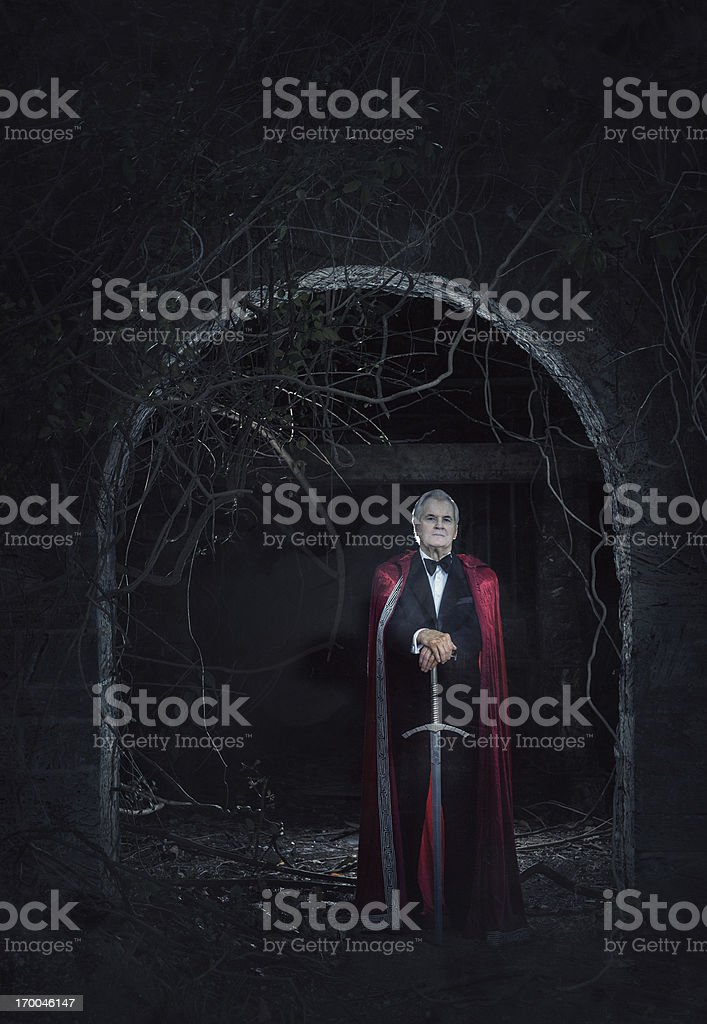 the last crusader stock photo