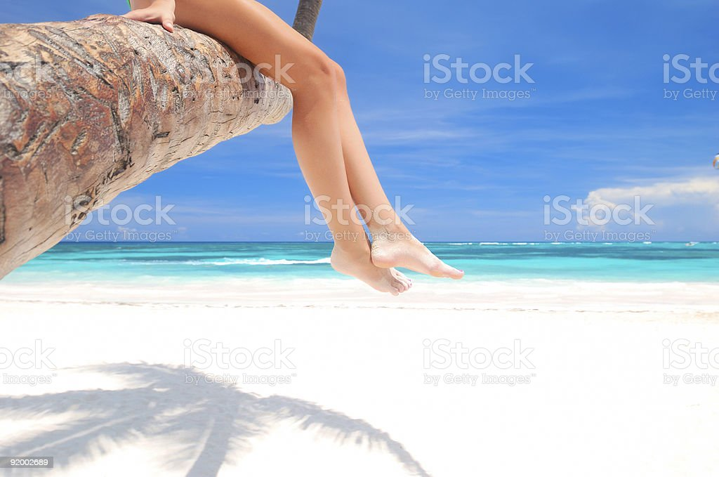 The legs of a woman sitting on a palm tree at the beach royalty-free stock photo