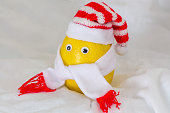 the lemon in the hat tied with scarf