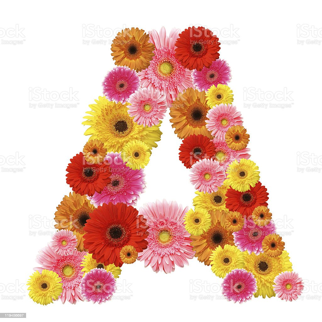 The letter A formed from bright colored flowers stock photo