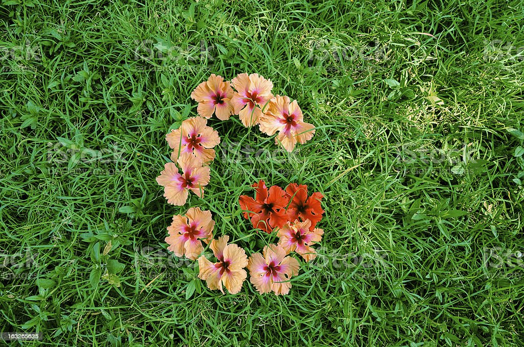 The letter G made out of flowers on a grass background. royalty-free stock photo