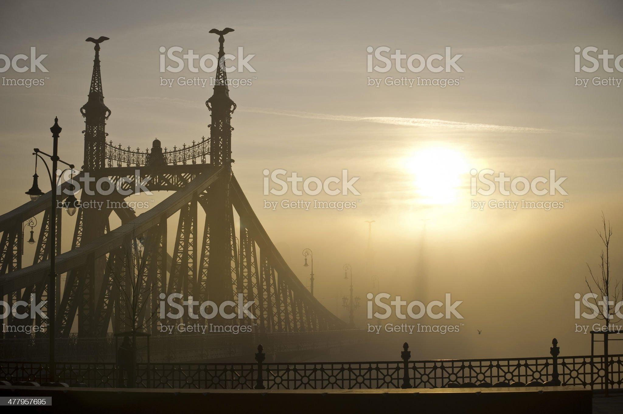 The Liberty Bridge in Budapest, Hungary. royalty-free stock photo