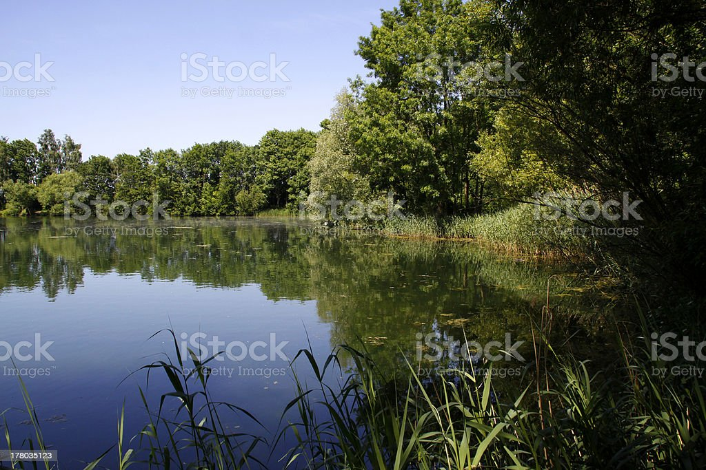The Lippe pond in Moellenbeck stock photo