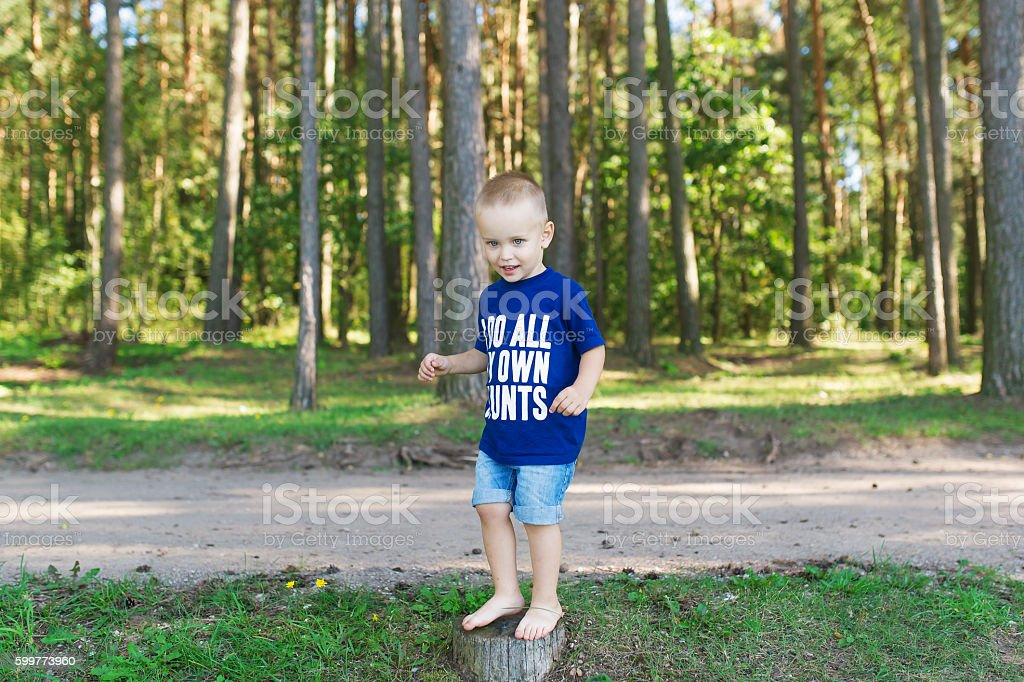 The little boy stand on the stump stock photo