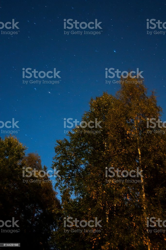 The Little Dipper and Polaris royalty-free stock photo