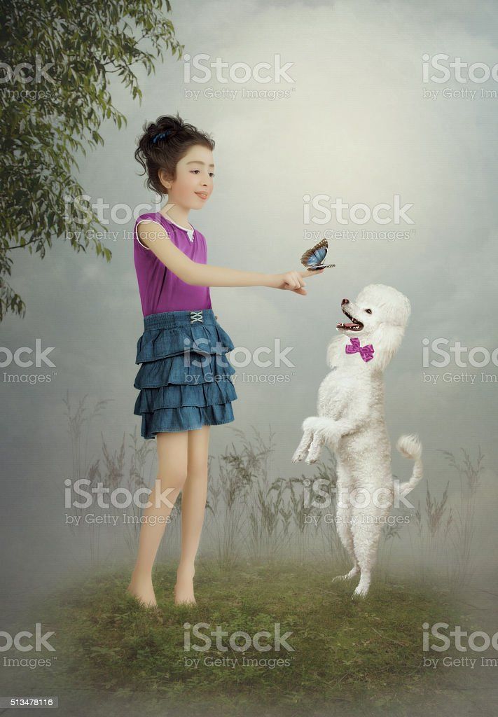The little girl and the dog stock photo