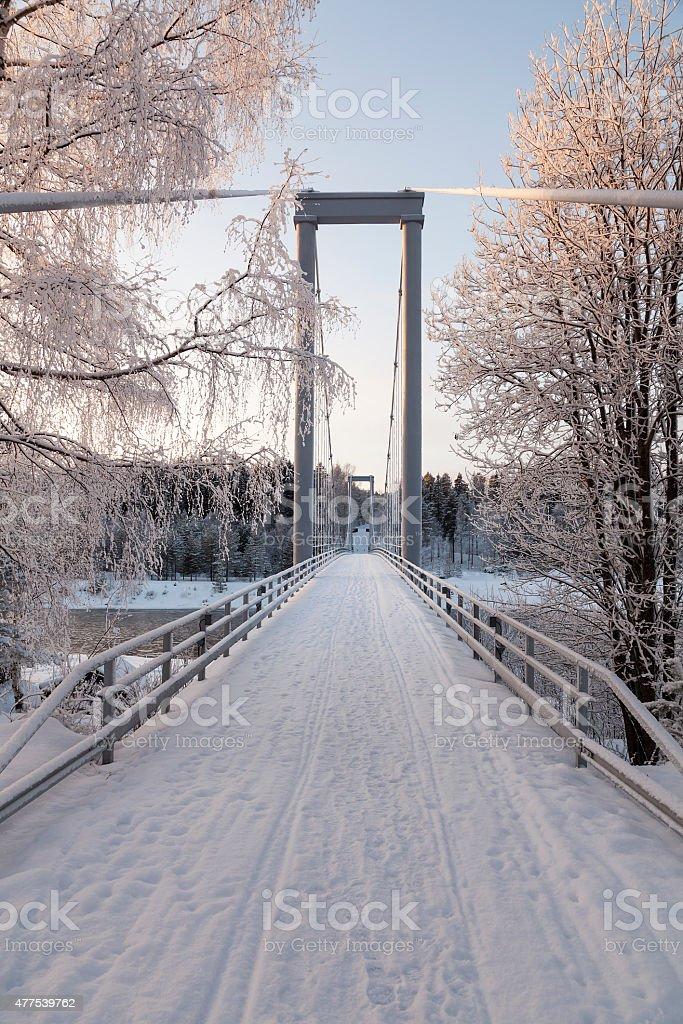The long bridge royalty-free stock photo