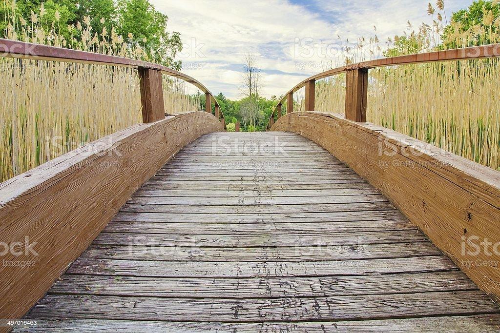 The Long Walk Home stock photo