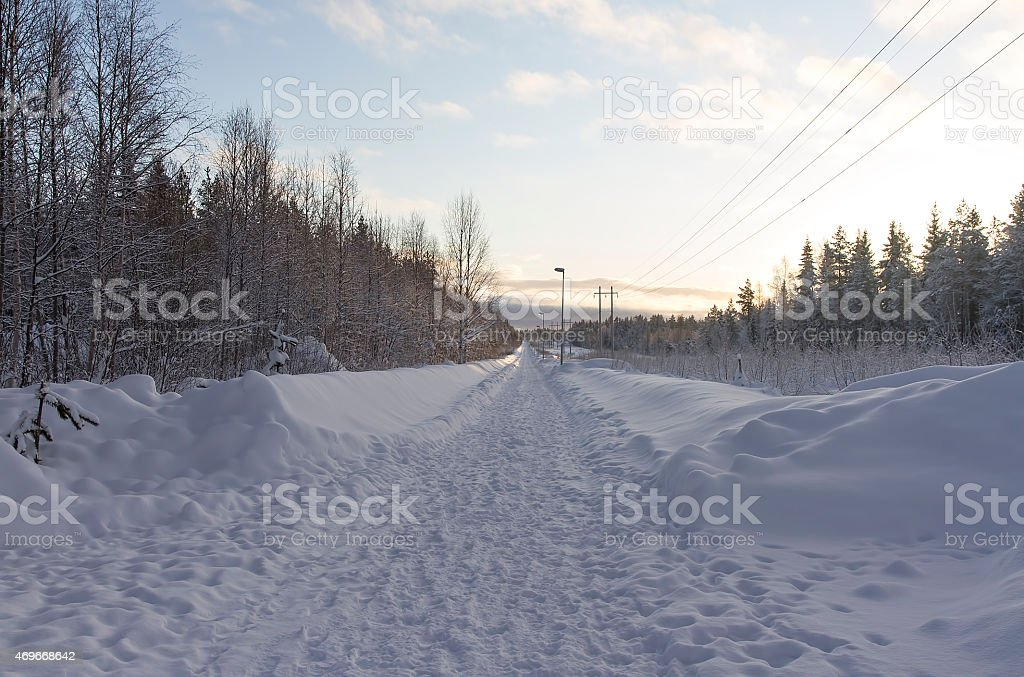 The long winter walk way royalty-free stock photo