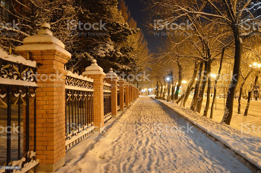 The long-awaited snow. The renewal of nature stock photo