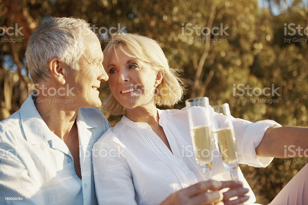 The look of love royalty-free stock photo