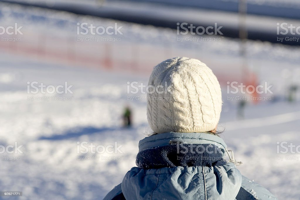 The look of winter royalty-free stock photo