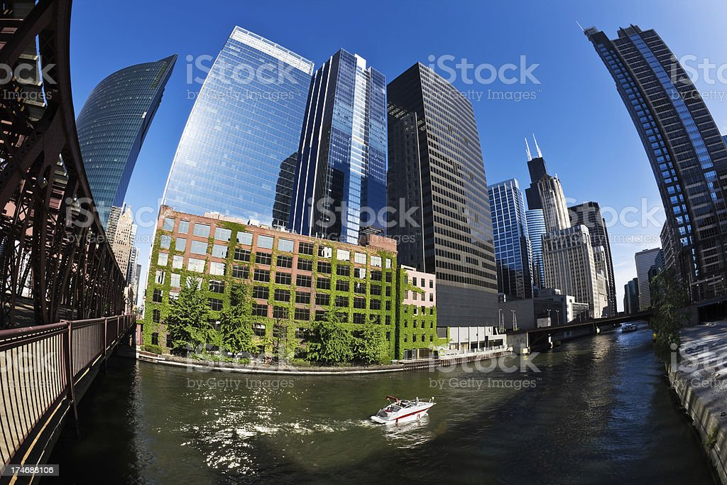 The Loop from Chicago River royalty-free stock photo