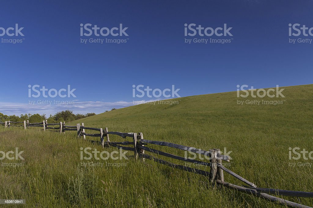 The Lump Meadow royalty-free stock photo